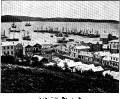 Image: Rattray Street, Dunedin, 1862