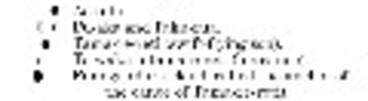 Image: Black and white image depicting the positioning of the stars Ao-tahi, Pu-aka and Taku-rua, Tama-re-reti (swift-flying son), Te-waka-o-tama-rereti (his canoe), and Puanga (dark cloud, called the anchor of the canoe of Tama-re-reti)