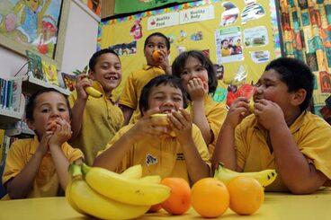 Image: Fruit in schools