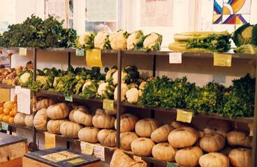 Image: Winter produce, Organic Food Co-op