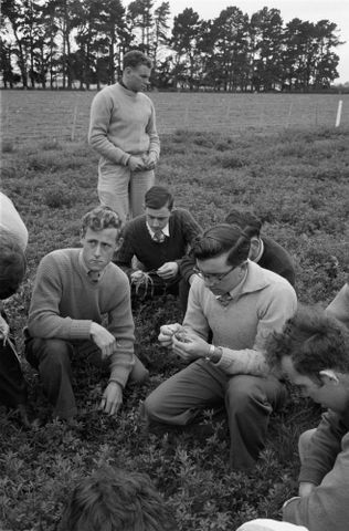 Image: (Men looking at grass in a field)