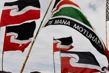 Image: Waitangi Day, 1996