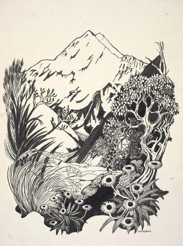 Image: Cover design for Mount Cook National Park booklet