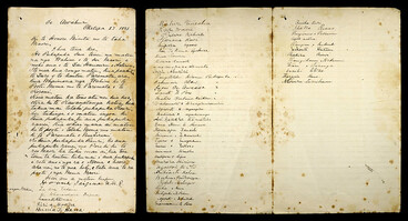 Image: Application from Māori women to have their names on electoral roll, 1893