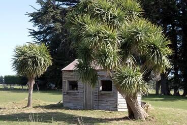 Image: Old house, Makarewa, Southland, New Zealand