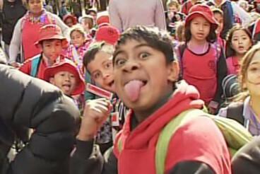 Image: Māori language parade fills Wellington with song