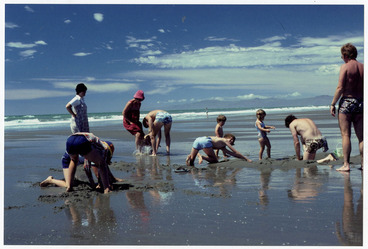 Image: Summer day at Pines Beach