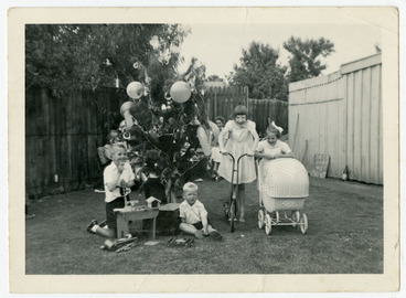 Image: Christmas in the backyard