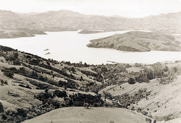 Image: Warships in Otago Harbour