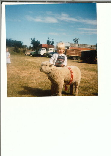Image: Amberley A&P Show pet lambs 2