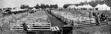 Image: Ellesmere Agricultural and Pastoral Show, sheep section