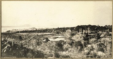 Image: [Domain from Hospital about 1869]