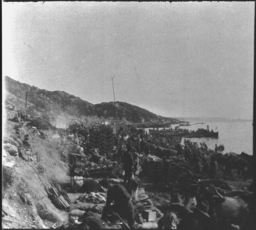 Image: [View of Anzac Cove]