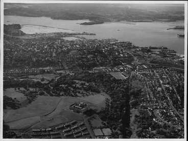 Image: Aerial view of Grafton and Domain.