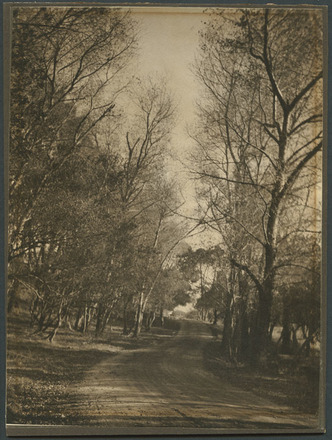 Image: [Entrance to Auckland Domain from Stanley Street.]