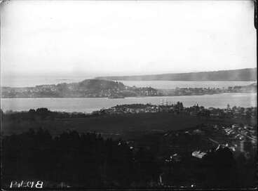 Image: View from Mt. Eden showing Domain before the Museum was built.