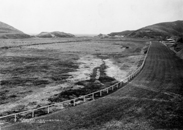 Image: Burton Brothers :Racecourse at Island Bay, Wellington