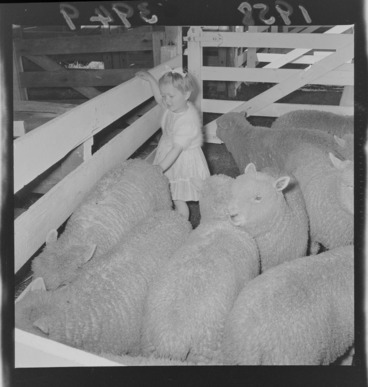 Image: Girl with sheep at Carterton Agricultural and Pastoral Show