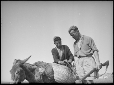 Image: Soldier searching wandering Arab in Tunisia - Photograph taken by M D Elias