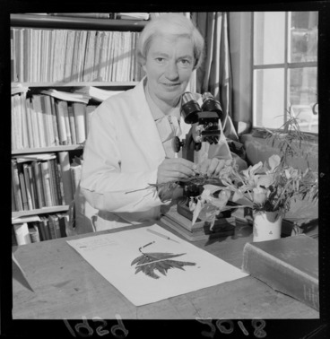 Image: Lucy Beatrice Moore, botanist, looking at a plant specimen with a microscope