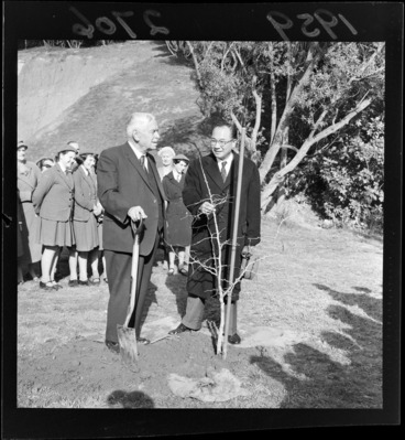 Image: Walter Nash and an unidentified man planting a tree on Arbour Day, location unidentified