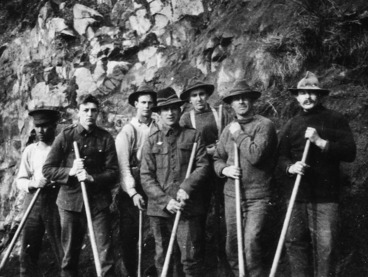 Image: Guards working party, Somes Island