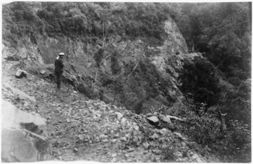 Image: On Waikaremoana Road, Te Whaiti district