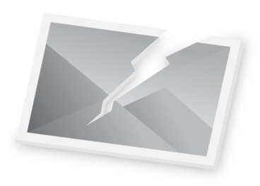 Image: Harris, Emily Cumming, 1837?-1925 :[Supplejack berries and leaves]. -/1/97. [1897].