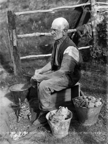 Image: Gum digger, possibly Mr Gallagher, with buckets of gum and a cat