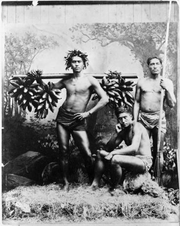 Image: Gatherers of wild bananas, Tahiti