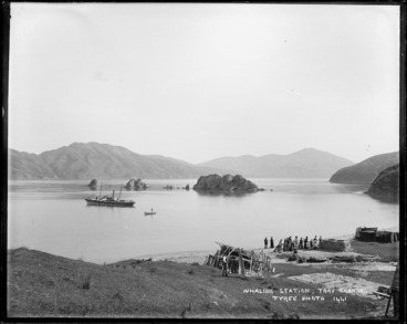 Image: Te Awaiti Bay, Tory Channel, with whaling station