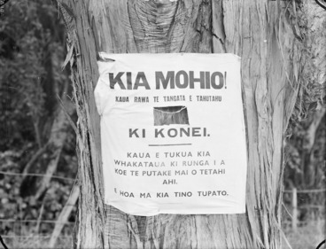 Image: Notice attached to a tree, written in Maori, warning not to light fires.
