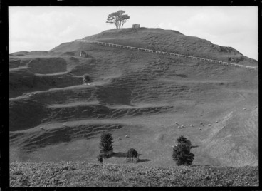 Image: One Tree Hill (Maungakiekie)