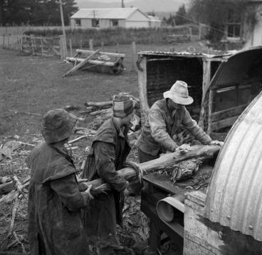 Image: Carol Sladden and June Matthews, of the Women's Land Service, helping farmer Bob McKenzie to saw manuka firewood