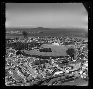 Image: Auckland Domain