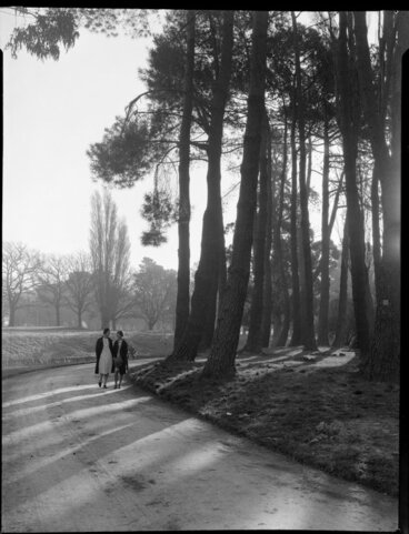 Image: Two unidentified women walking beside the Avon River under pine trees in the Botanical Gardens, Christchurch