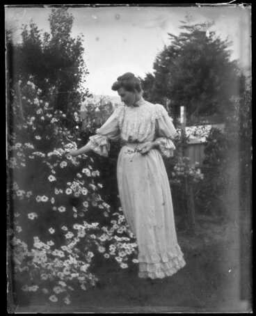 Image: Portrait of unidentified woman picking climbing roses in domestic garden