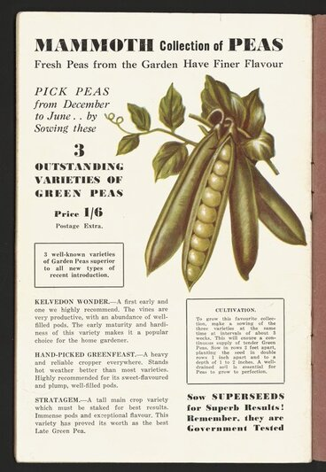 Image: F M Winstone (Seeds) Ltd :Mammoth collection of peas; fresh peas from the garden have finer flavour. Pick peas from December to June ... by sowing these 3 outstanding varieties of green peas. Price 1/6 [1946]