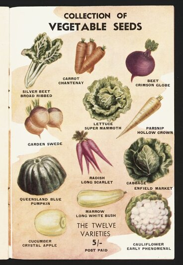 Image: F M Winstone (Seeds) Ltd :Collection of vegetable seeds. The twelve varieties 5/- post paid [1946]
