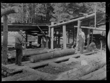 Image: A sawmill at Berhampore, Wellington