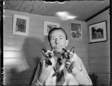 Image: Man and two Siamese cats