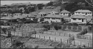 Image: Saleyards, and state houses, Johsonville, Wellington