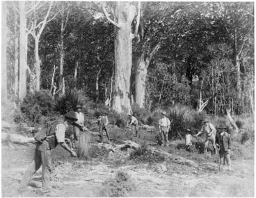 Image: Kauri gum diggers, location unidentified