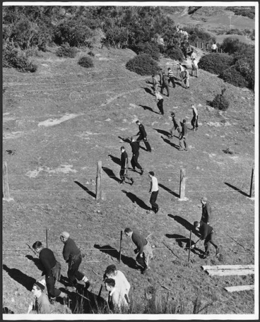 Image: Police searching the hills above Melrose Terrace, Wellington, New Zealand