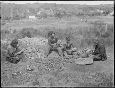 Image: Gum diggers scraping kauri gum, Northland