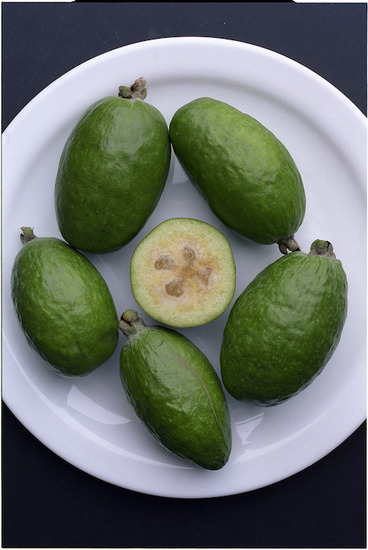 Image: A plate containing feijoas - Photograph taken by Phil Reid