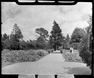 Image: Unidentified couple in the Botanic Gardens, Christchurch
