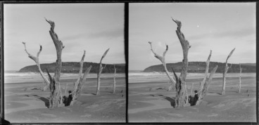 Image: Two boys on a beach, Catlins, Otago