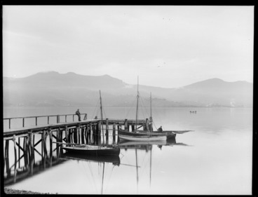 Image: Broad Bay, Dunedin, with jetty and boats