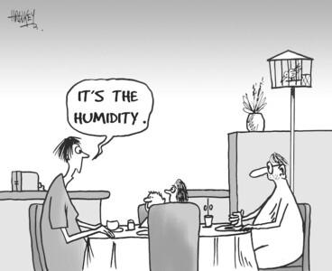 "Image: ""It's the humidity."" 16 January, 2007"